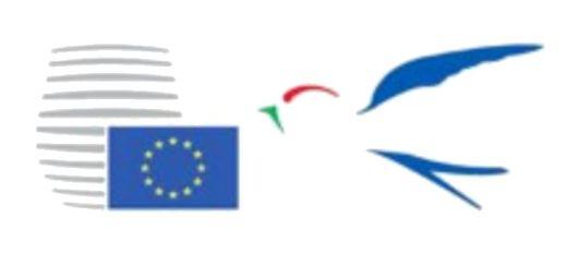 Presidenza del Consiglio dell'Unione europea